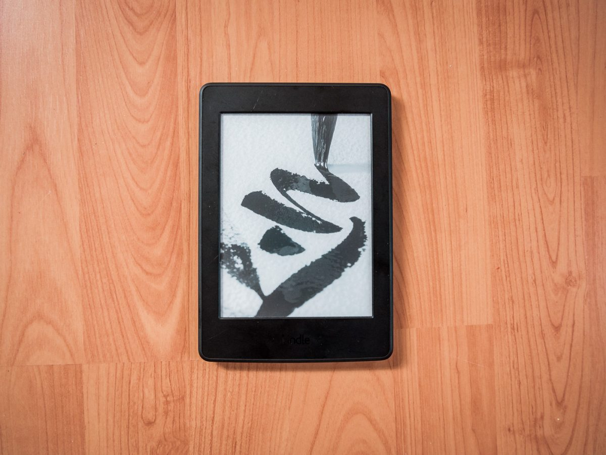 eBook-Reader auf Weltreise