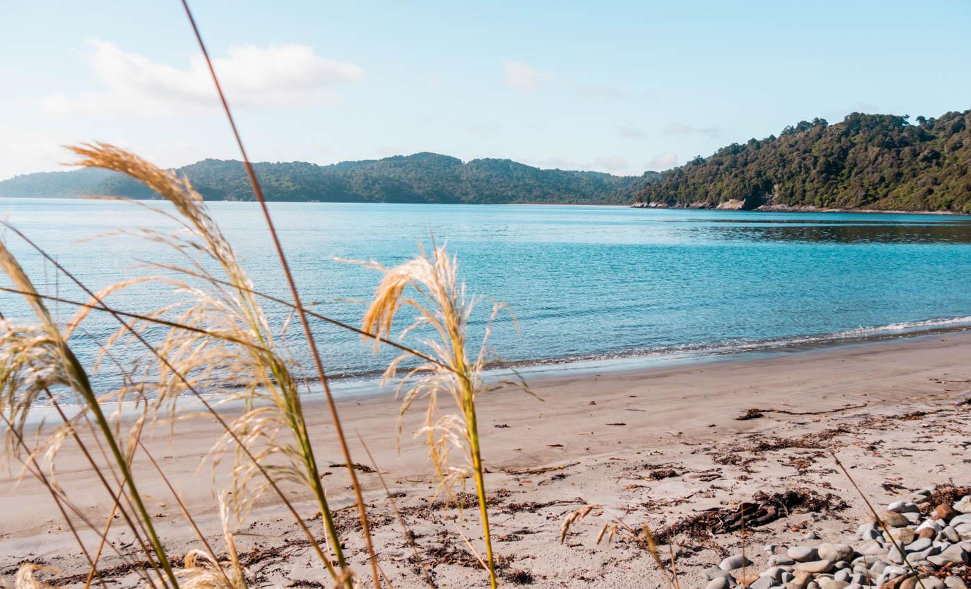 Port William Stewart Island