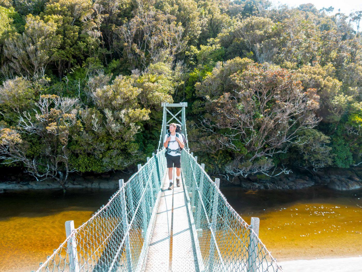 Stewart Island Walk Swing Bridge