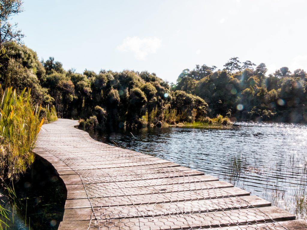 Catlins Lake Wilkie