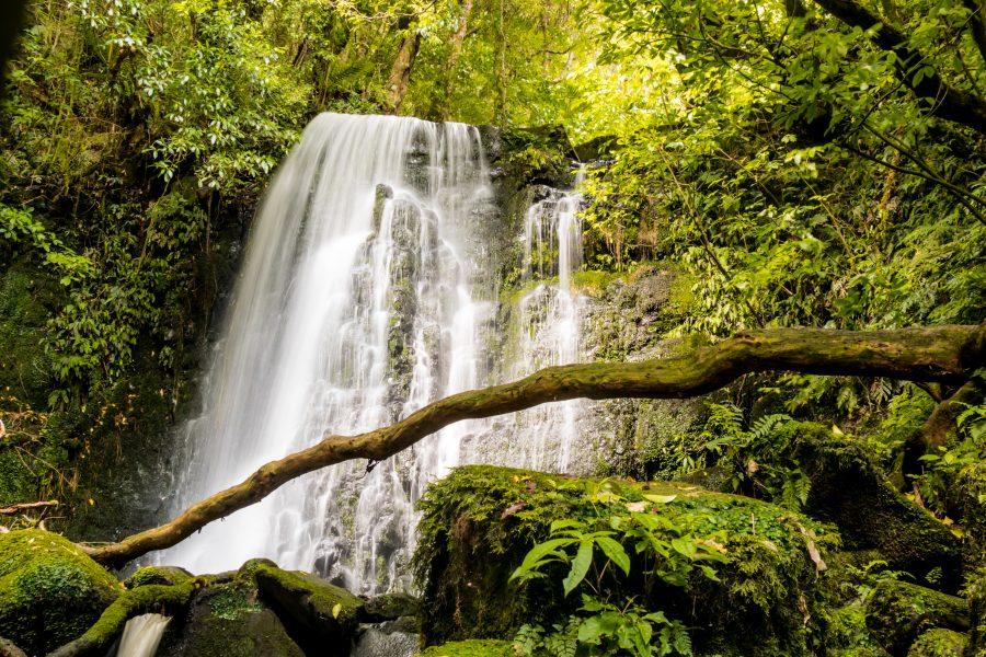 Matti Falls Catlins Neuseeland