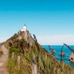 Nugget Point Neuseeland
