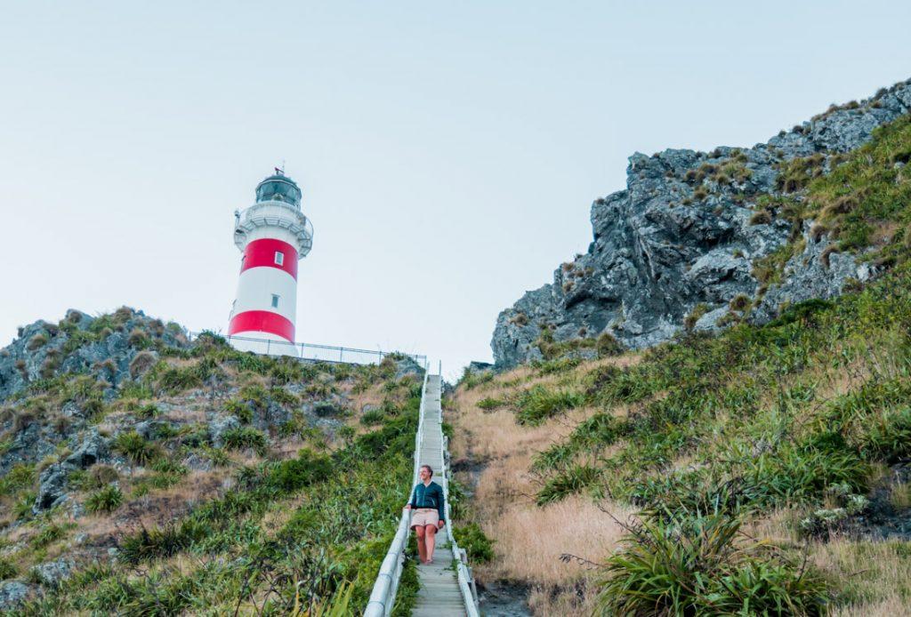 Der Leuchtturm am Cape Palliser auf der Nordinsel