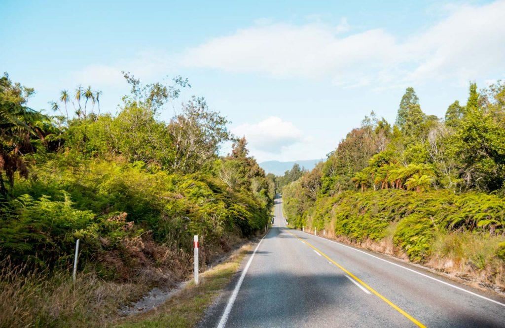 Westküste Neuseeland Roadtrip durch Regenwald