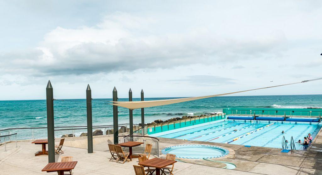 Heißer Pool in Dunedin mit Robben