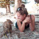 Highlights in Westautralien - Quokkas aud Rottnest Island