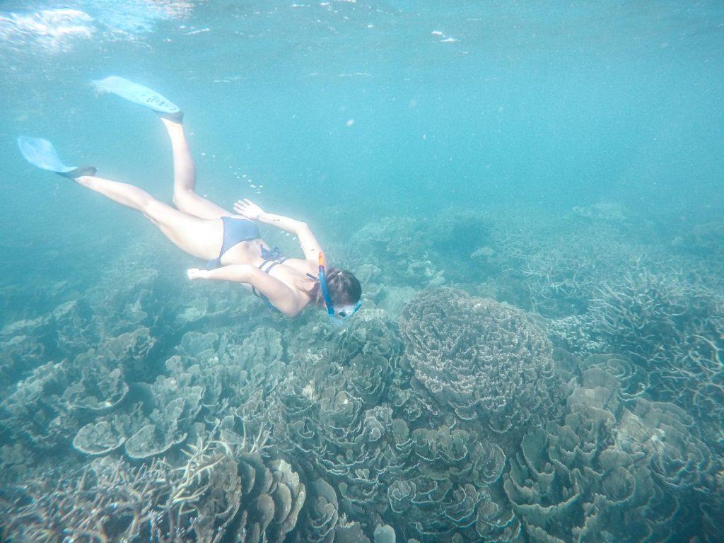 Schnorcheln in Ningaloo Reef, Westautralien