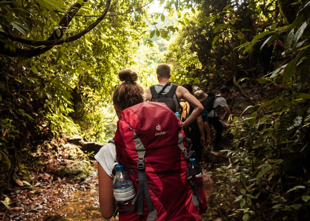 Jungle Trekking Sumatra
